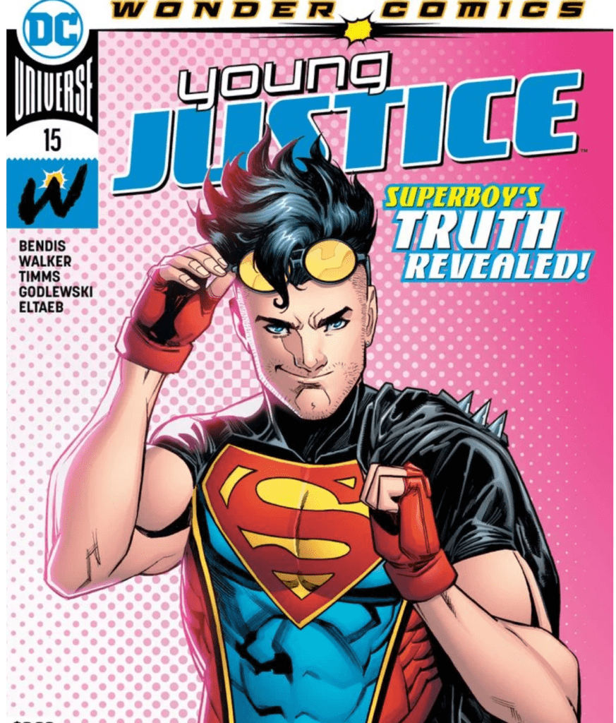 Young Justice 15 Cover