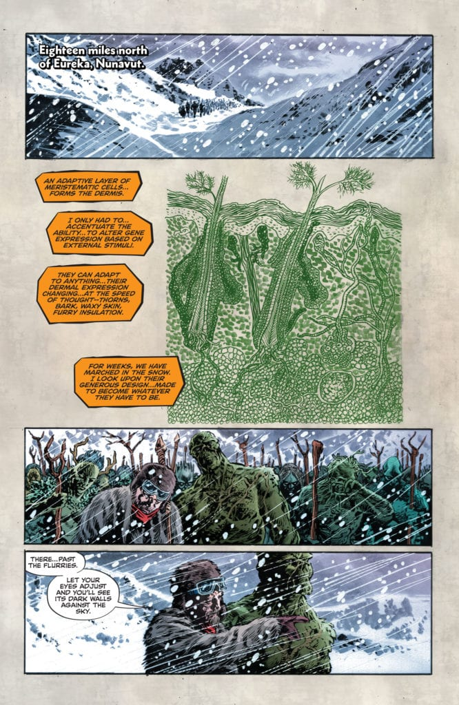 Swamp Thing V DC Comics